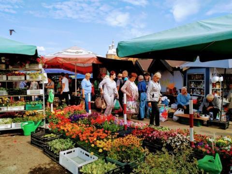 Rynek Maślany, fot. Justyna Hejmej