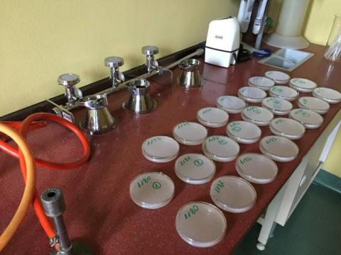 Uwaga Paszyn: woda skażona bakteriami coli. Ujęcia ZGKiM bezpieczne