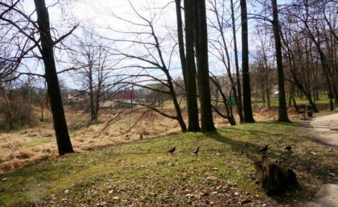 Jak zamienić ponad 16 milionów w dziesięć hektarów parku z polem golfowym
