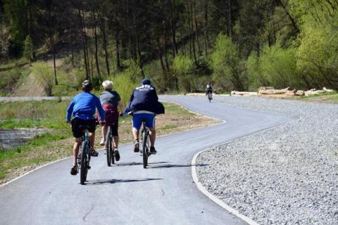 Kolarze na ścieżkach rowerowych