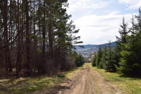 czytaj też: Rusza budowa ponad 100 kilometrów EuroVelo w Piwnicznej-Zdroju!