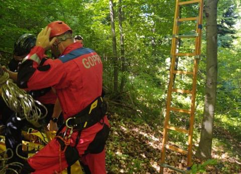 Paralotniarz utknął na drzewie. Nie mógł samodzielnie zejść na ziemię