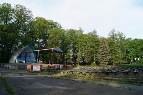 Wycinka drzew w Parku Strzeleckim