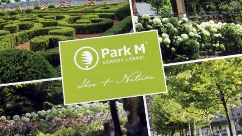 Park – M: kupić sadzonkę to nie wszystko, bo co dalej? [WIDEO]