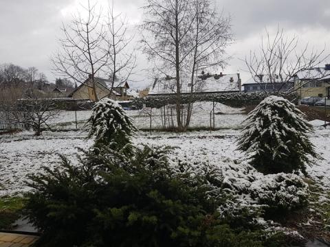 Wielki powrót zimy wiosną. Wszystko przez niż genueński