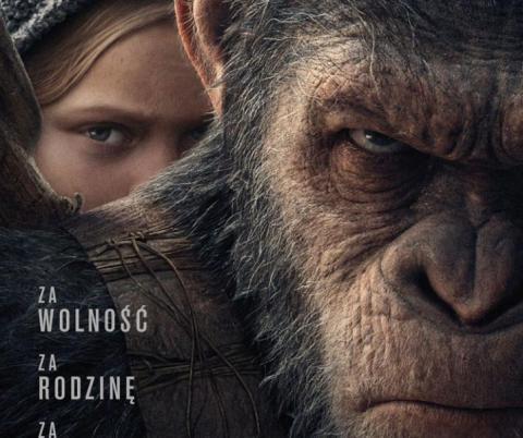Kino Helios, Sokół i Jaworzyna. Repertuar kina (28 lipca – 3 sierpnia)