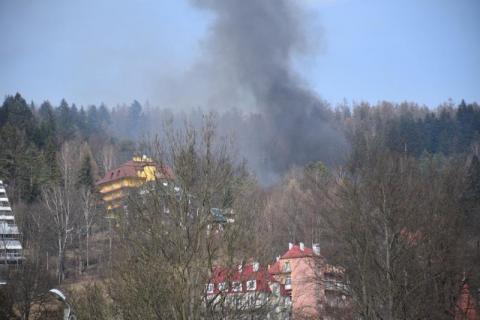 Krynica: płomienie strawiły tuje, groźnie wyglądający pożar widać było z deptaka
