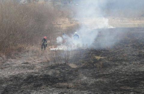 Pożar ścierniska w Zarzeczu. Obyło się bez rannych