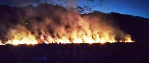 Trawy ciągle płoną. W nocy strażacy mieli kilka wyjazdów do pożarów
