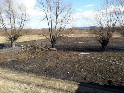 Pożar suchych traw w Białej Niżnej. 70-latka ma poparzone niemal całe ciało