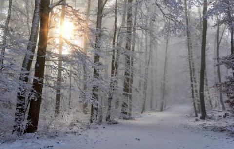 Przesilenie zimowe. To ono było przyczyną złego samopoczucia w niedzielę!