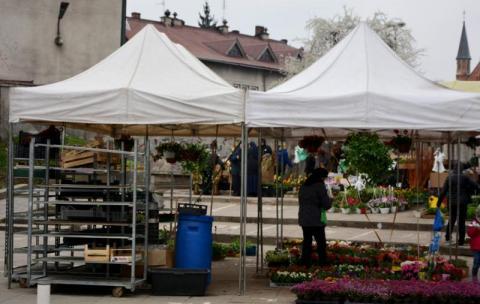 Monitoring lub ochrona na Rynku Maślanym