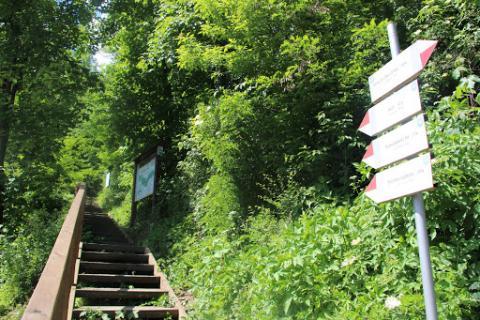 Tunel w górze Wegielnik. Tak może wyglądać obwodnica w Piwnicznej-Zdroju