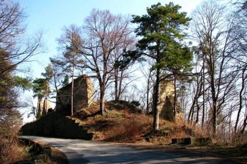 Zamek w Rożnowie