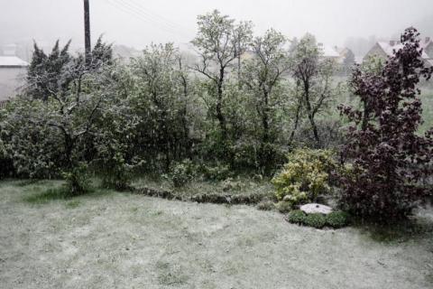 No nie! Atak zimy w maju! Nad Nowym Sączem przeszła śnieżyca [WIDEO][ZDJĘCIA]