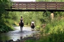 Jak pożenić sądeckiego konia z turystyką dobry biznes?