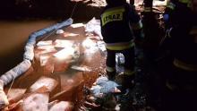 Olej opałowy w potoku Smolnik. Strażacy 4 godziny usuwali zanieczyszczenie