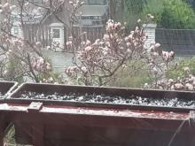 Ulewa, burza i gradowe kule. To nas czeka w Nowym Sączu