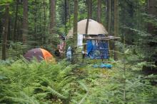 Lipnica Wielka: siedemdziesiąt dziewczyn z całej Polski zamieszkało... w lesie