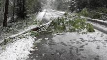 Orkan Fryderyka szalał w Małopolsce