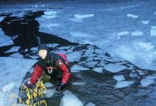 Wznowiono poszukiwania 18-latki z Florynki. Płetwonurkowie przeszukali dno stawu