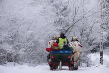 Zima skąpi białego puchu na nizinach.Śnieżne krajobrazy zobaczysz w górach