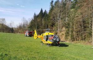 Podczas prac w lesie doszło do nieszczęśliwego wypadku. Drzewo przygniotło 60-letniego mężczyznę. Jego stan musiał być bardzo poważny, bo przyleciał po niego śmigłowiec Lotniczego Pogotowia Ratunkowego.