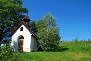Rusza remont 52 kapliczek. Wśród nich ta z Tęgoborzy z okresu I wojny światowej