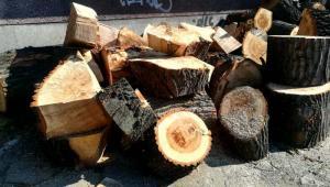 Drewno przy ulicy Kolejowej