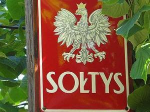 W gminie Chełmiec wybory sołeckie były przełożone w związku z epidemią COVID-19, ale okazało się, że mimo nietypowych okoliczności rewolucji w wynikach nie ma. Jak to wygląda w szczegółach?